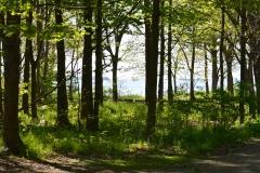 Lake-Erie-Islands-Preserve