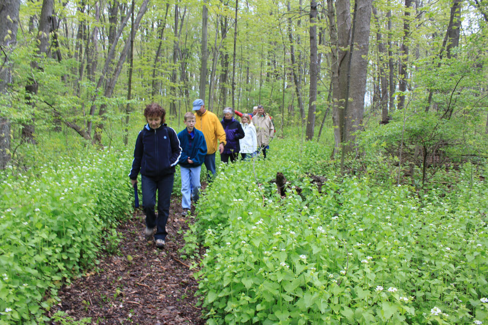 Vistors enjoy the spring flowers along the Jane Coates Wildflower Trail
