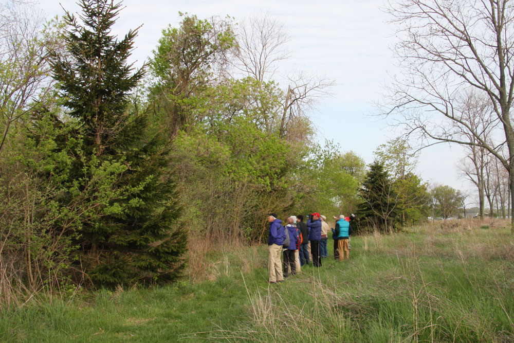 Birdwatchers at Scheeff East Point Nature Preserve