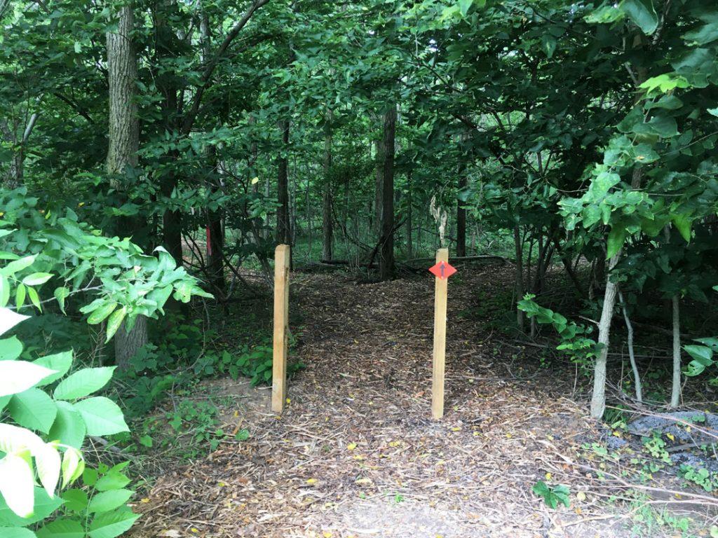 LEIC - Dodge Woods Preserve Trail