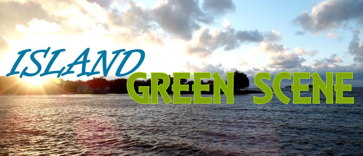 LEIC Island Green Scene