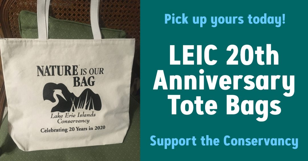 LEIC 20th Anniversary Tote Bags