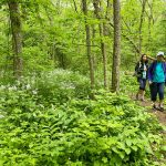 Visitors walking an LEIC nature trail.